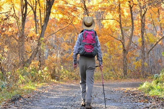 Amazing Fall Field Trips for Aging Adults in Barrie, ON