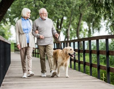 Ways for Enhancing an Aging Adult's Quality of Life in Barrie, ON