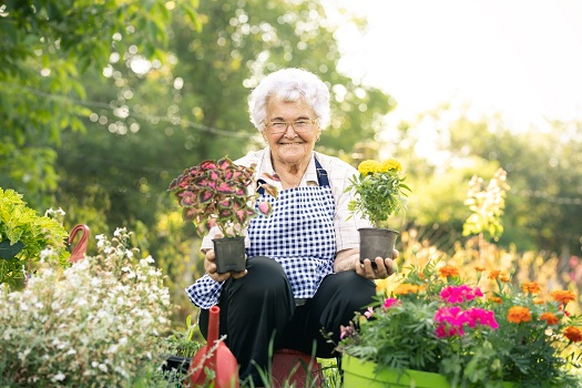 Great Garden Activity Ideas for Older Adults with Dementia in Barrie, ON